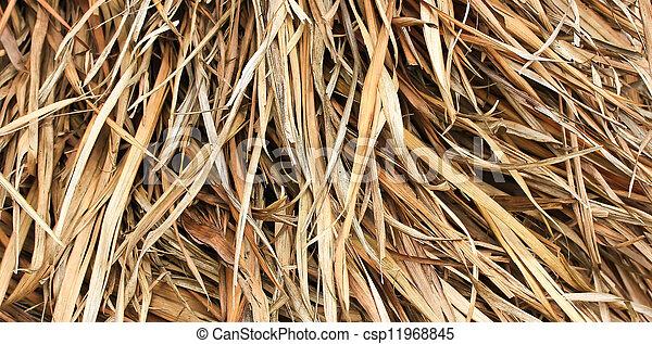 葉, 干し草, かえで - csp11968845