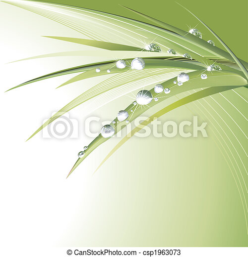 葉, 緑, waterdrops - csp1963073