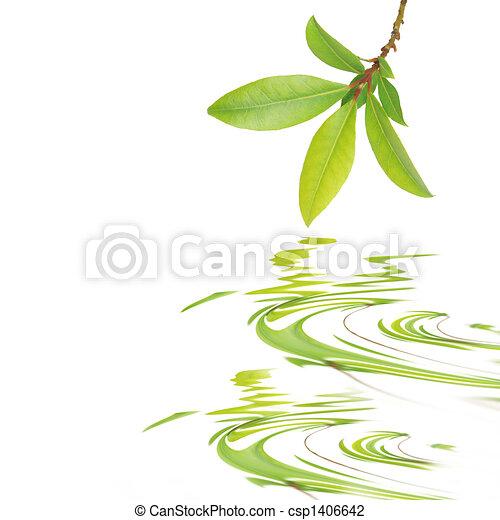葉, 美しさ, 湾 - csp1406642