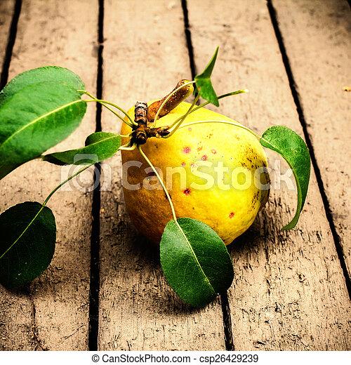 葉, 背景, 新たに, 木製のセイヨウナシ, 古い, clo, 緑, 黄色 - csp26429239