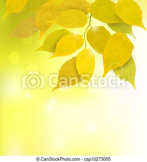 葉, 背景, 秋 - csp10273005