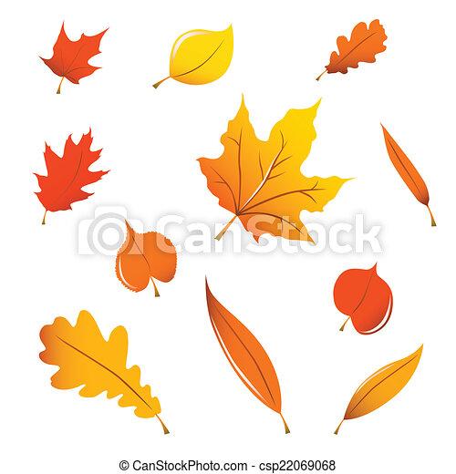 葉, 雑多, 秋 - csp22069068