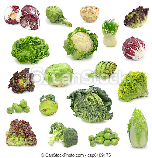 蔬菜, 收集, 洋白菜, 绿色 - csp6109175