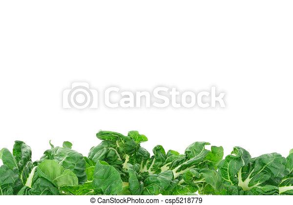 蔬菜, 绿色, 边界 - csp5218779