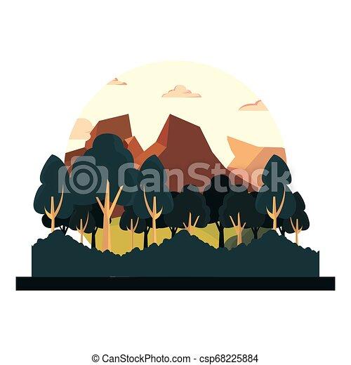 薮, 山, 自然, 木, 群葉, 風景 - csp68225884
