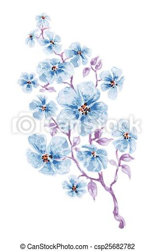 藍色, 水彩, 花, 分支 - csp25682782