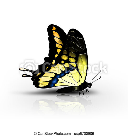蝴蝶, 黃色 - csp6700906