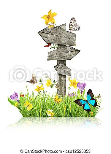 蝶, 春, 概念, 牧草地, 道標 - csp12525353