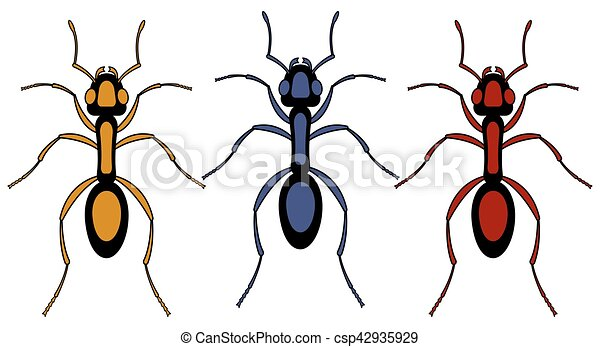 蟻, 昆虫, セット - csp42935929