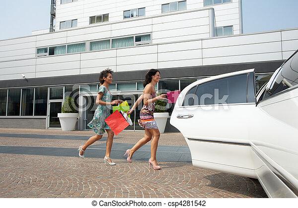 袋子, 购物, 旅游者 - csp4281542
