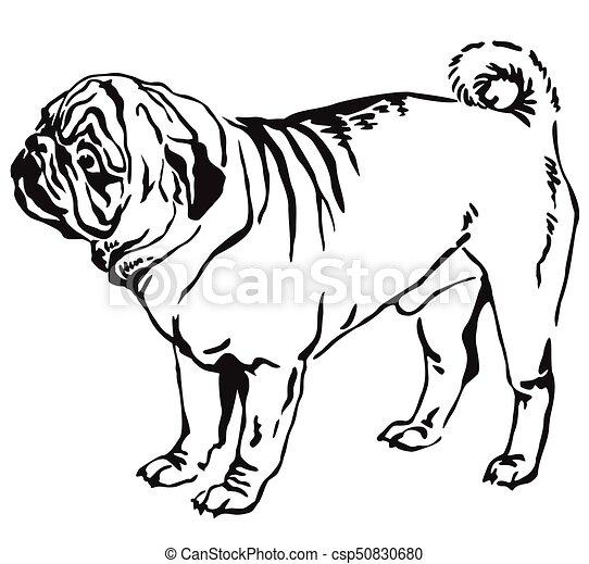 装飾用である 地位 Pug 犬 イラスト ベクトル 肖像画 装飾用である