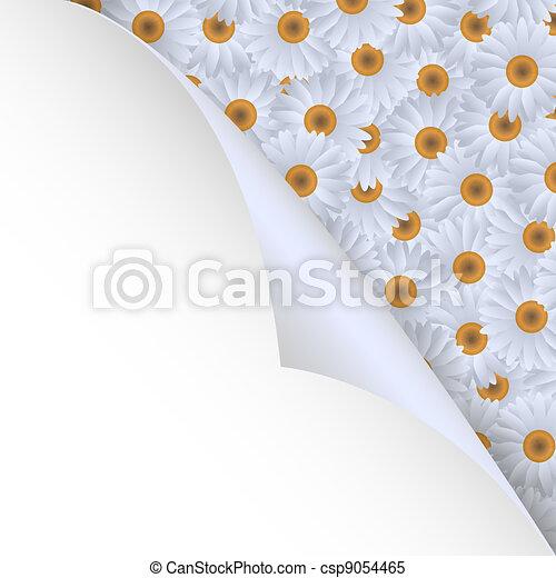角落, 紙, chamomiles - csp9054465