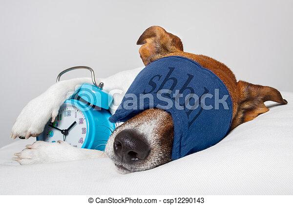 警報, 睡眠のマスク, 犬, 時計 - csp12290143