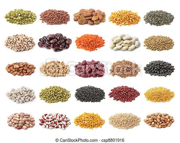 豆類, 彙整 - csp8801916