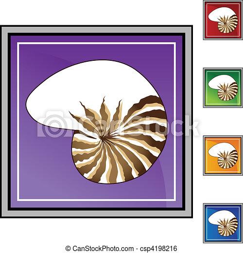 貝殻 - csp4198216