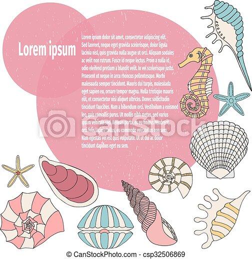 貝殻, フレーム - csp32506869