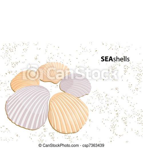 貝殻, ベクトル - csp7363439