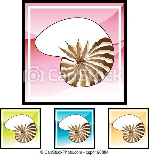 貝殻 - csp4198884