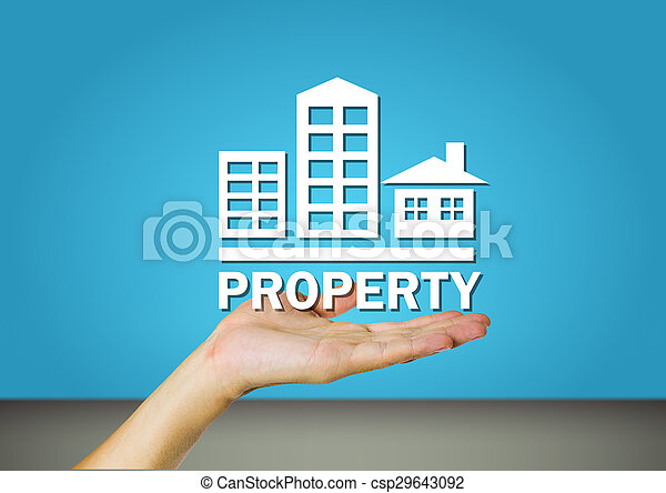 财产 - csp29643092