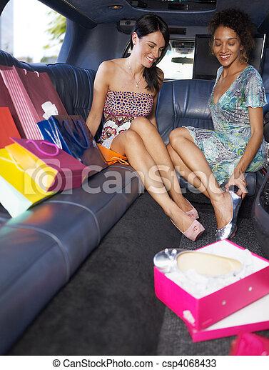 购物, 轿车, 妇女 - csp4068433