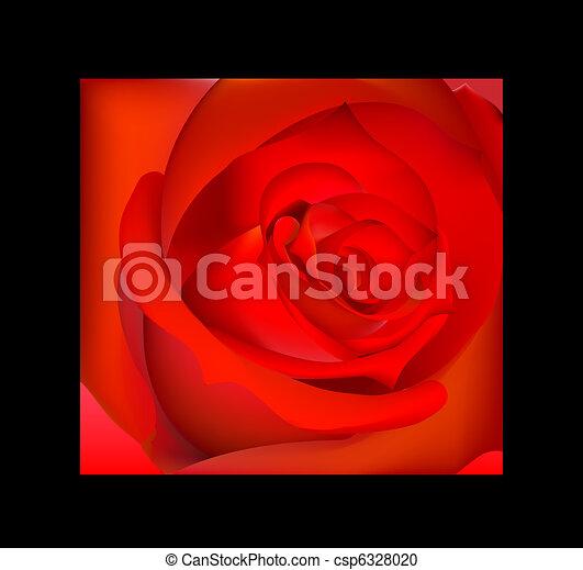 赤いバラ - csp6328020