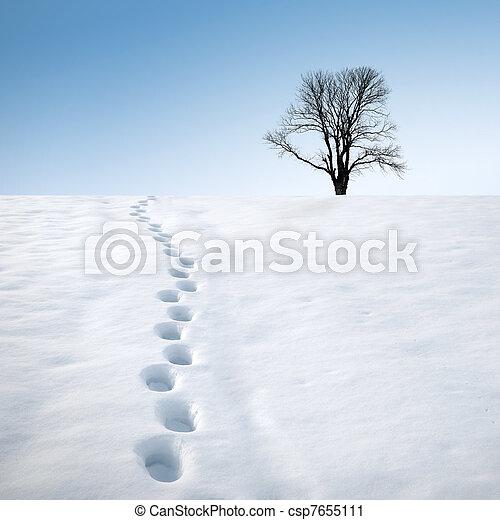 足跡, 木, 雪 - csp7655111