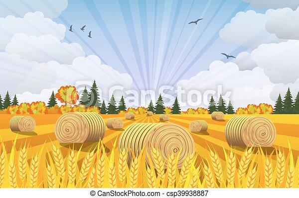 農村, 乾草堆, fields., 風景 - csp39938887