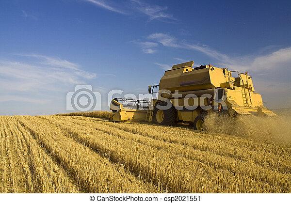 農業, -, コンバイン - csp2021551