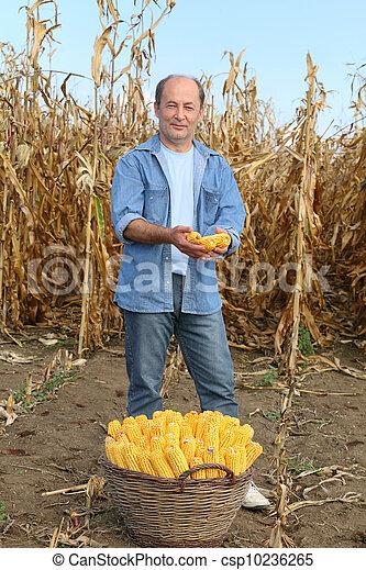 農業 - csp10236265