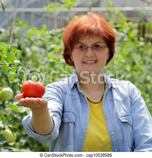 農業 - csp10538586