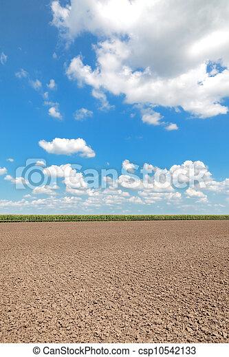農業 - csp10542133