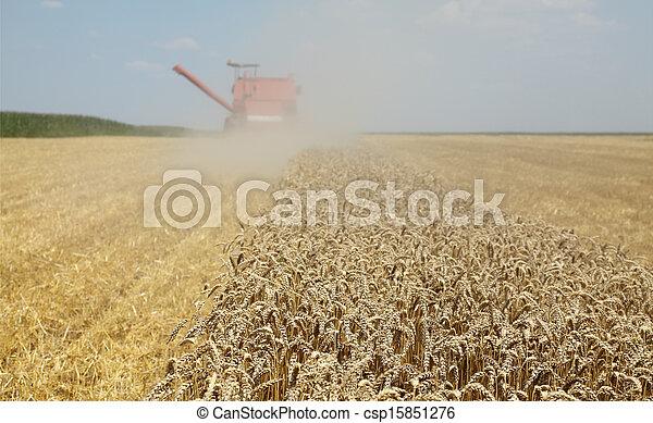 農業 - csp15851276