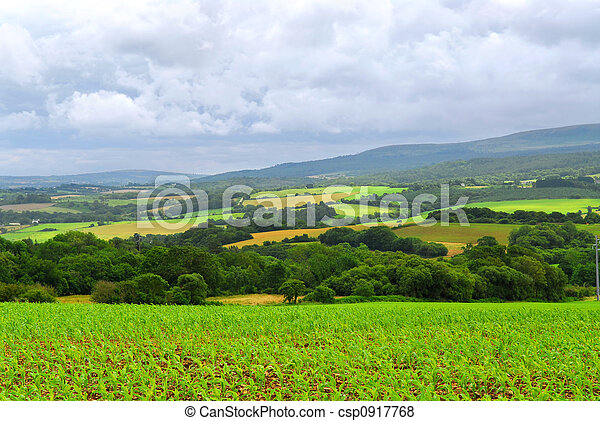 農業, 風景 - csp0917768