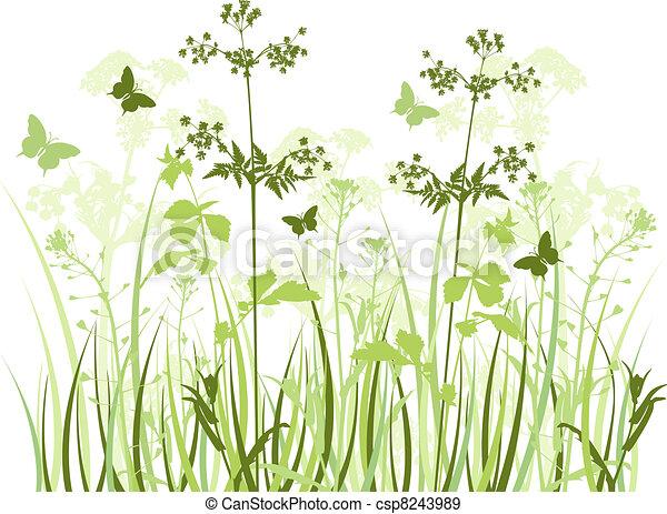 野生の花, 牧草地 - csp8243989