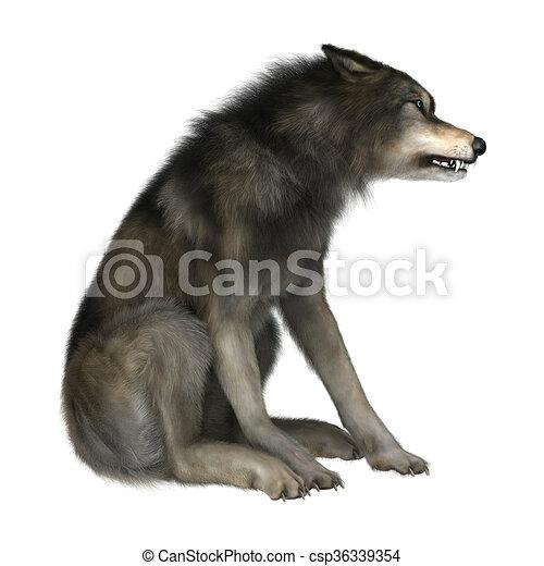 野生 白い狼 イラスト 3d モデル 隔離された イラスト 狼 背景