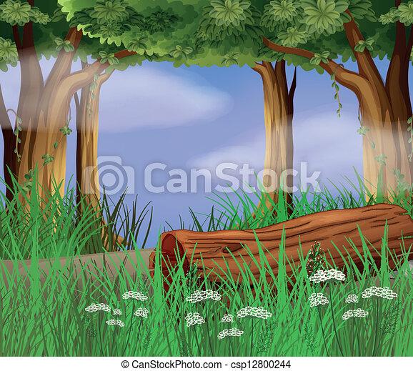 雑草, 長い間, 路傍 - csp12800244