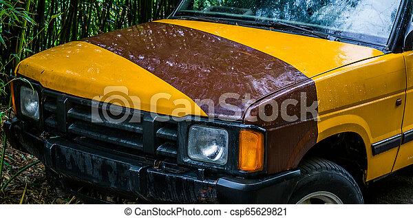 離れて, サファリ, 自動車, 車, ジープ, 背景, バンパー, 道 - csp65629821
