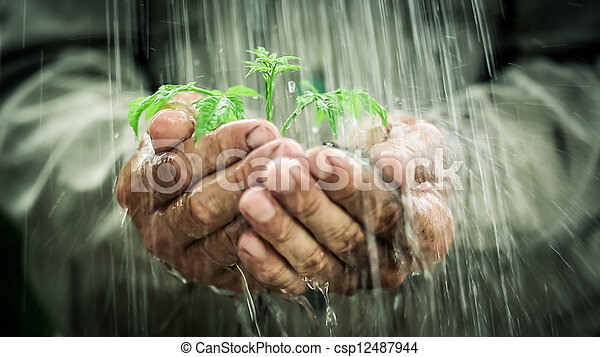 雨 - csp12487944