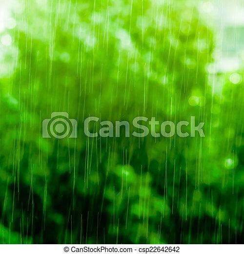 雨 - csp22642642