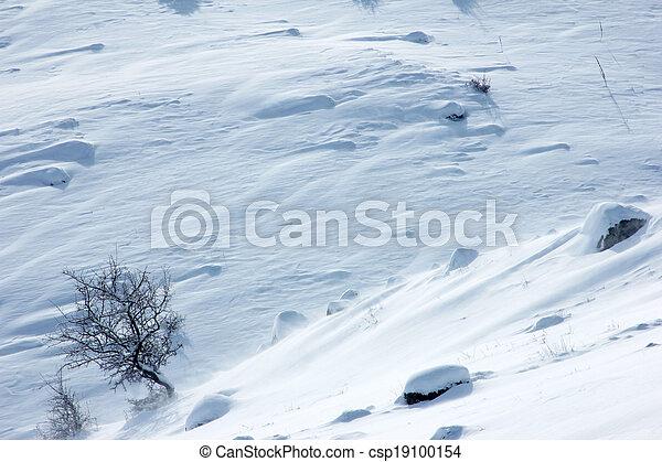 雪 - csp19100154