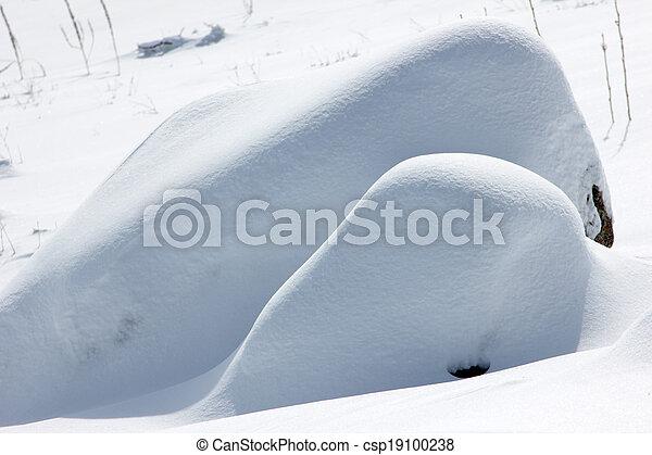 雪 - csp19100238