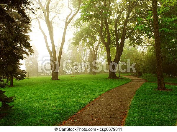 霧が濃い, 公園 - csp0679041