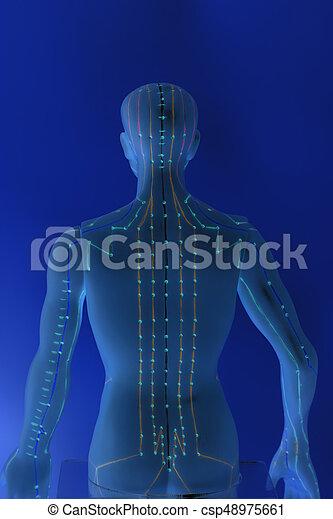 青い背景, 医学, 人間, 刺鍼術, モデル - csp48975661