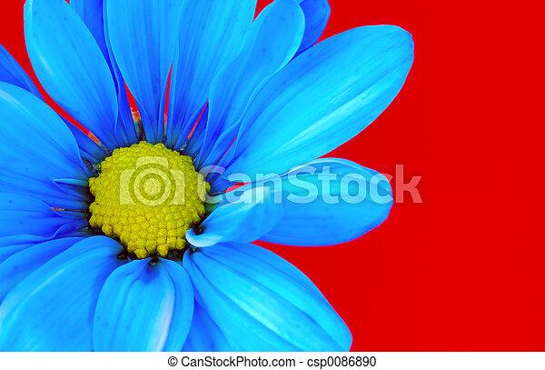 青い花 - csp0086890