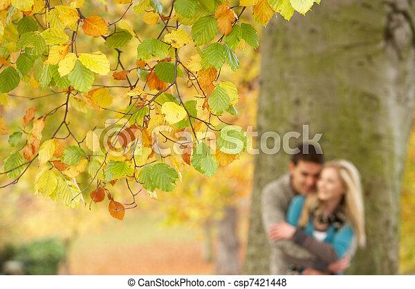 青少年, 浪漫, 樹, 夫婦, 淺, 公園, 集中, 秋天, 看法 - csp7421448