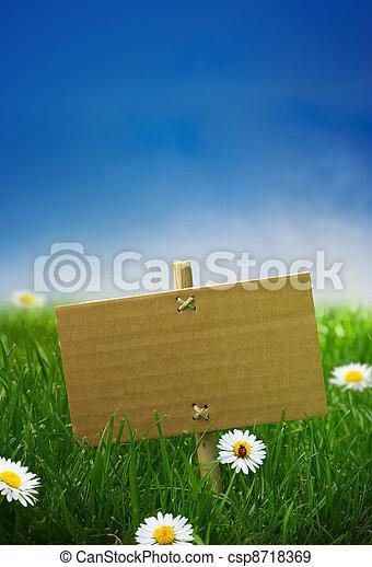 青, ボール紙, 庭, 自然, いくつか, 空, 印, 草, 背景, 緑, テントウムシ, 花, ヒナギク, 空 - csp8718369
