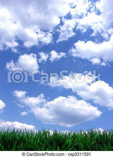 青, 新たに, 空, 緑, gras - csp3311591