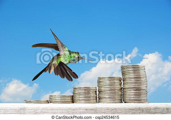 青, backgr, 山, 上に, コイン, 空, に対して, 浮かぶこと, ハチドリ - csp24534615