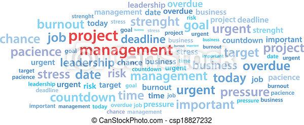 項目管理, 詞, 雲 - csp18827232