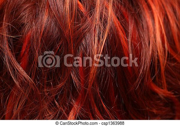 頭髮, 特寫鏡頭 - csp1363988